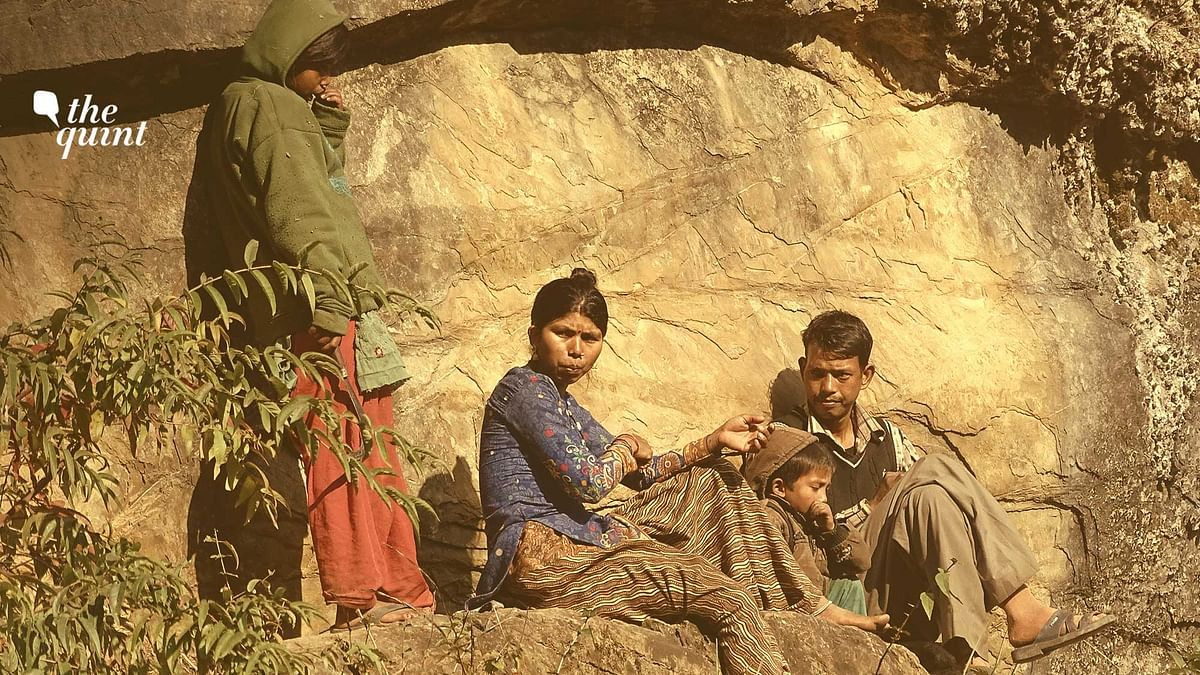 A Van-Raji family in rocky habitats. Image used for representational purposes.