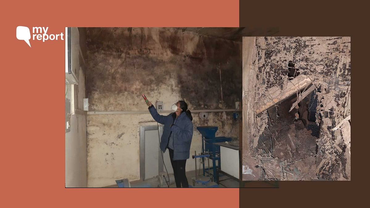 'Termites, Seepage at JNU Lab Destroyed Yrs of PhD Research Work'