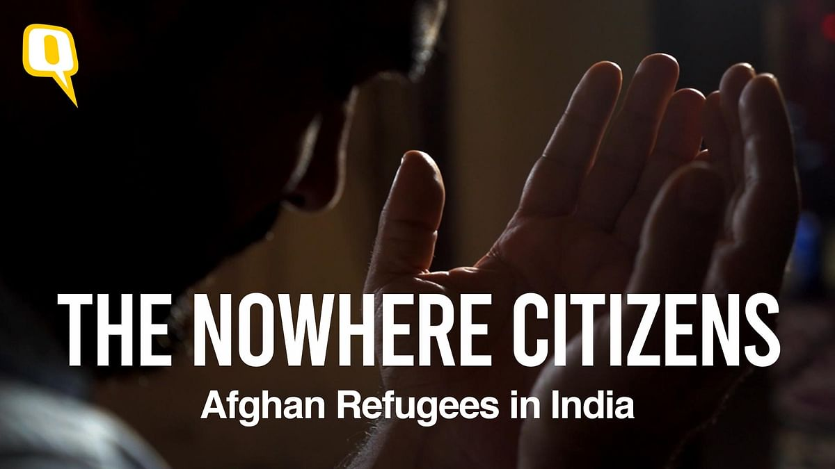 No Homeland,  No Human Rights: Lives of Afghan Refugees in India
