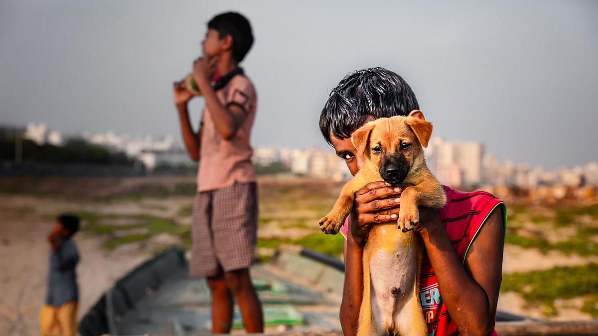 Support Pours in For UP Boy and Pet Dog Abandoned By Parents