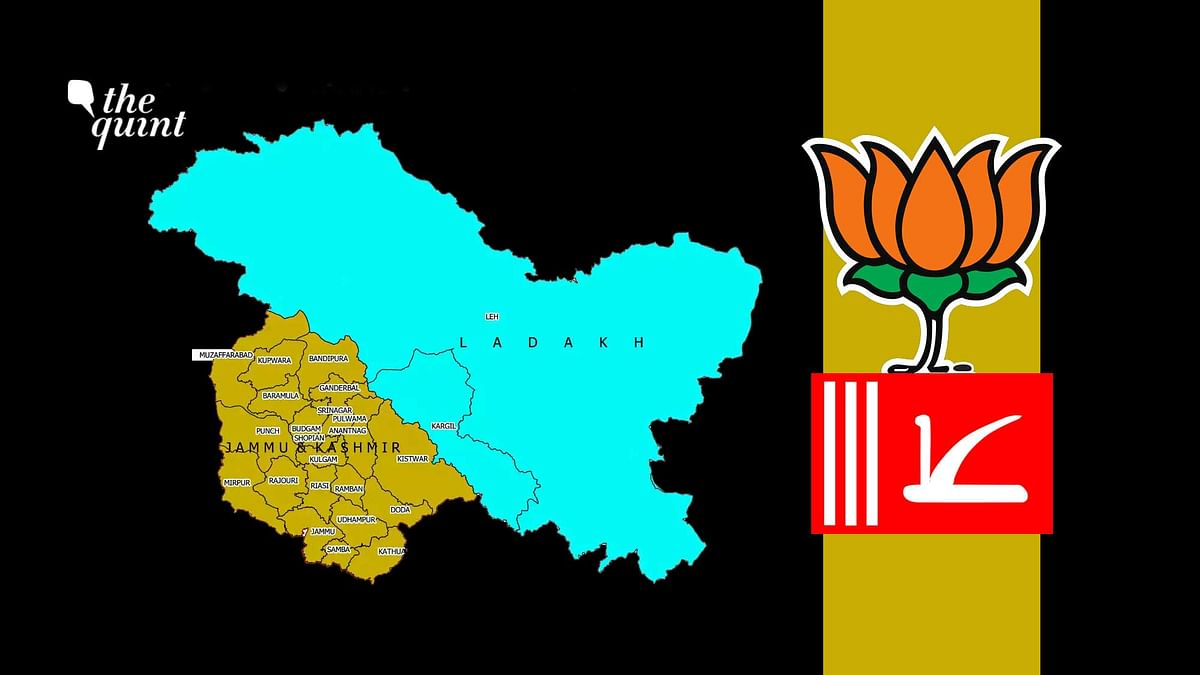DDC Polls: Gupkar Alliance Sweeps Kashmir; BJP Wins Big in Jammu