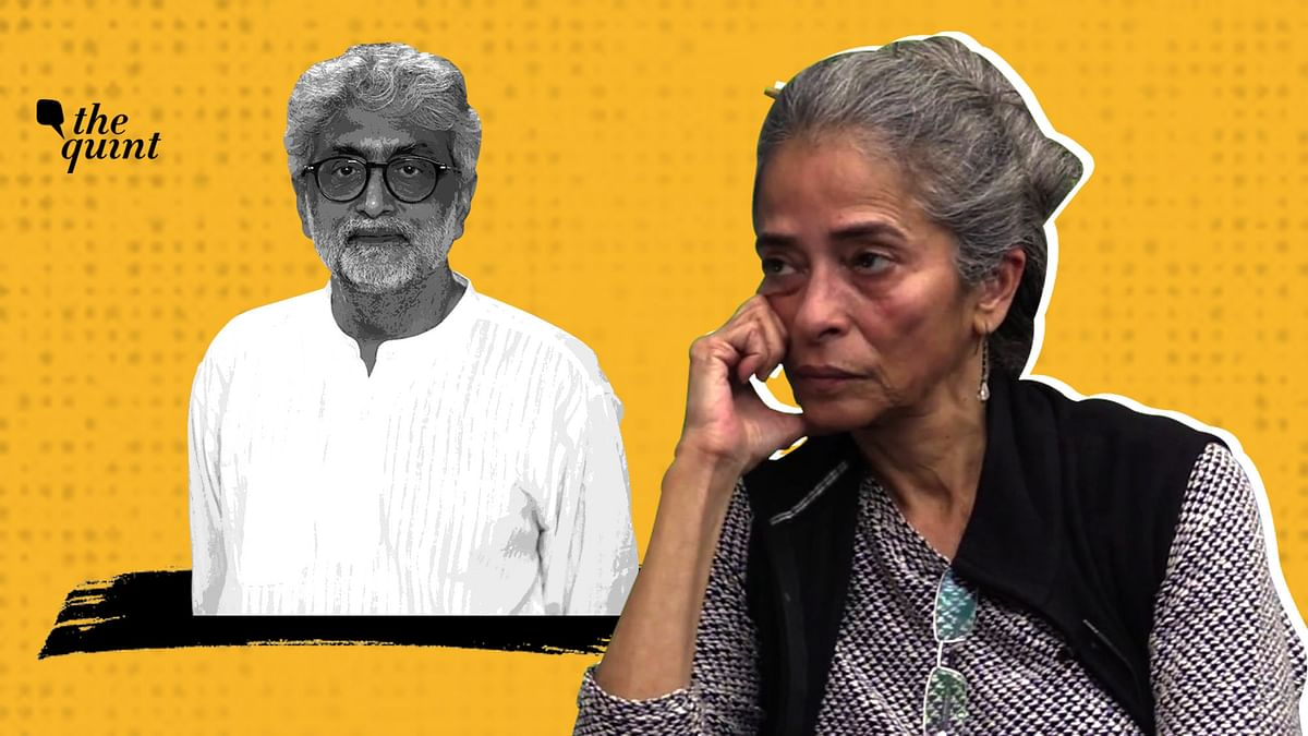 'Frustrated, Enraged': Sahba Husain on Gautam Navlakha Glasses Row