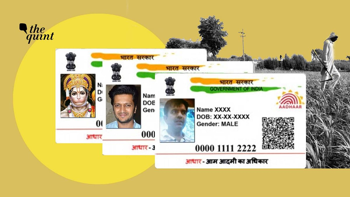 Riteish Deshmukh, Hanuman and Pak spy Mehboob Rajpoot's Aadhaar numbers were used to register for PM KISAN scheme.