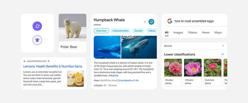 Google to Enhance Reading Experience by Redesigning Search Results