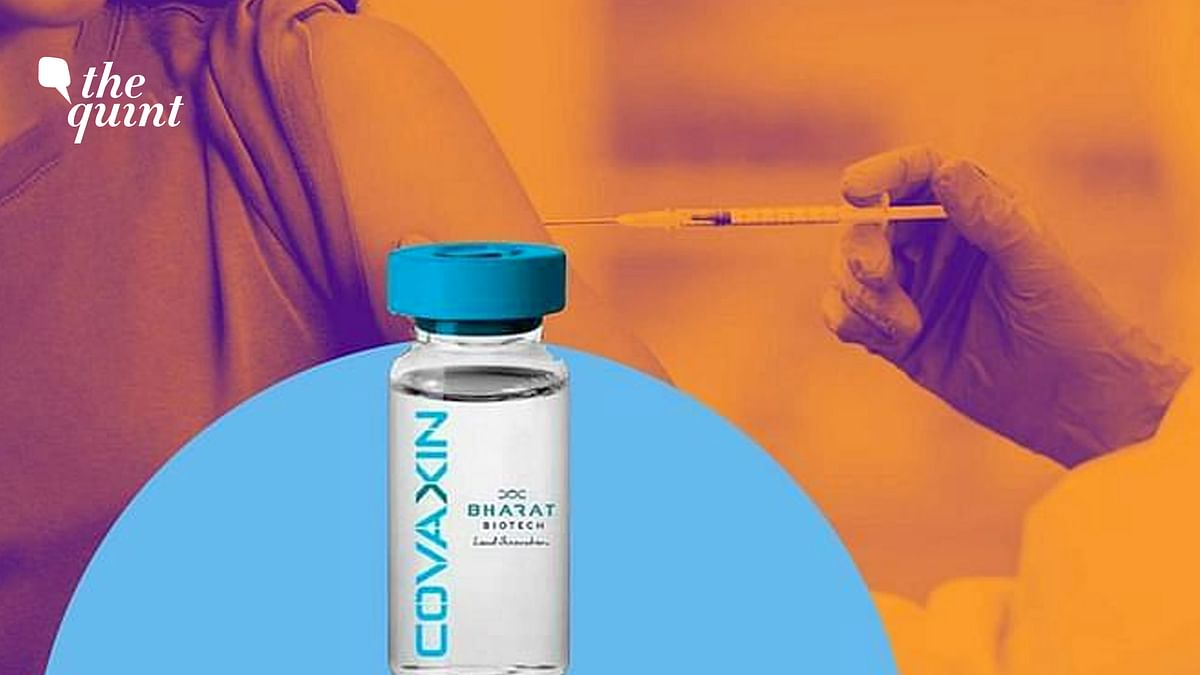 FAQ: What Does Covaxin's 81% Efficacy Mean? How Does It Work?