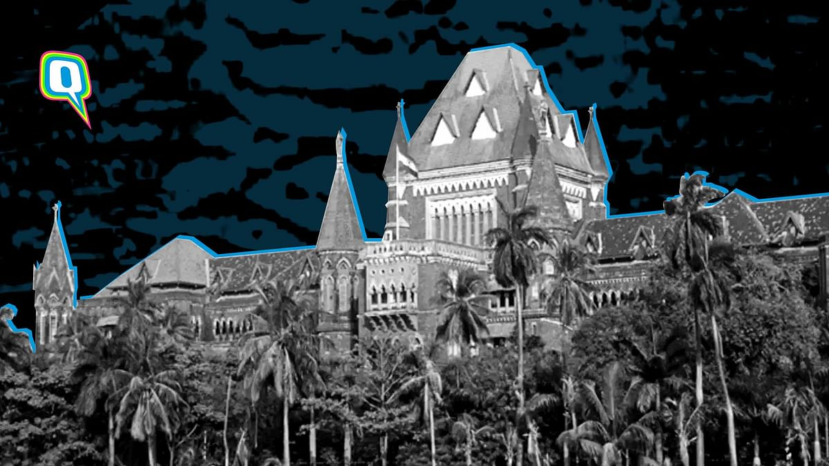 Twitter Outraged Over Bombay HC's Controversial POCSO Judgment