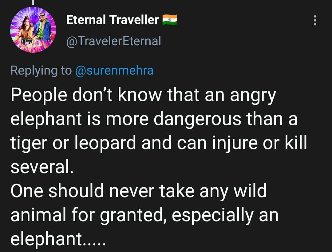 Elephant Charges Towards Car as Woman Says 'Kuch Nahi Hoga'