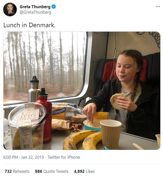 Edited Image of Greta Thunberg Shared  Amid 'Toolkit' Controversy