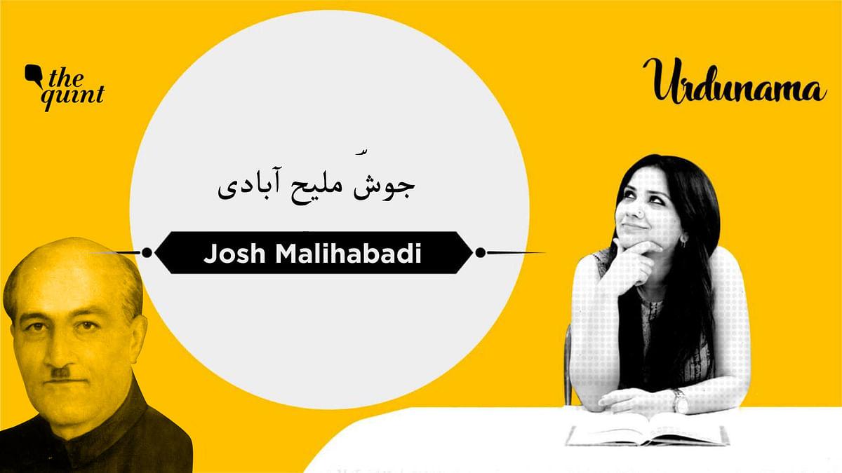 Shayar-e-Inquilab: Josh Malihabadi's Poems Spoke To Those in Power