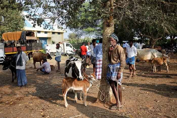 A cattle farmer waits for his turn at Terakanambi market.