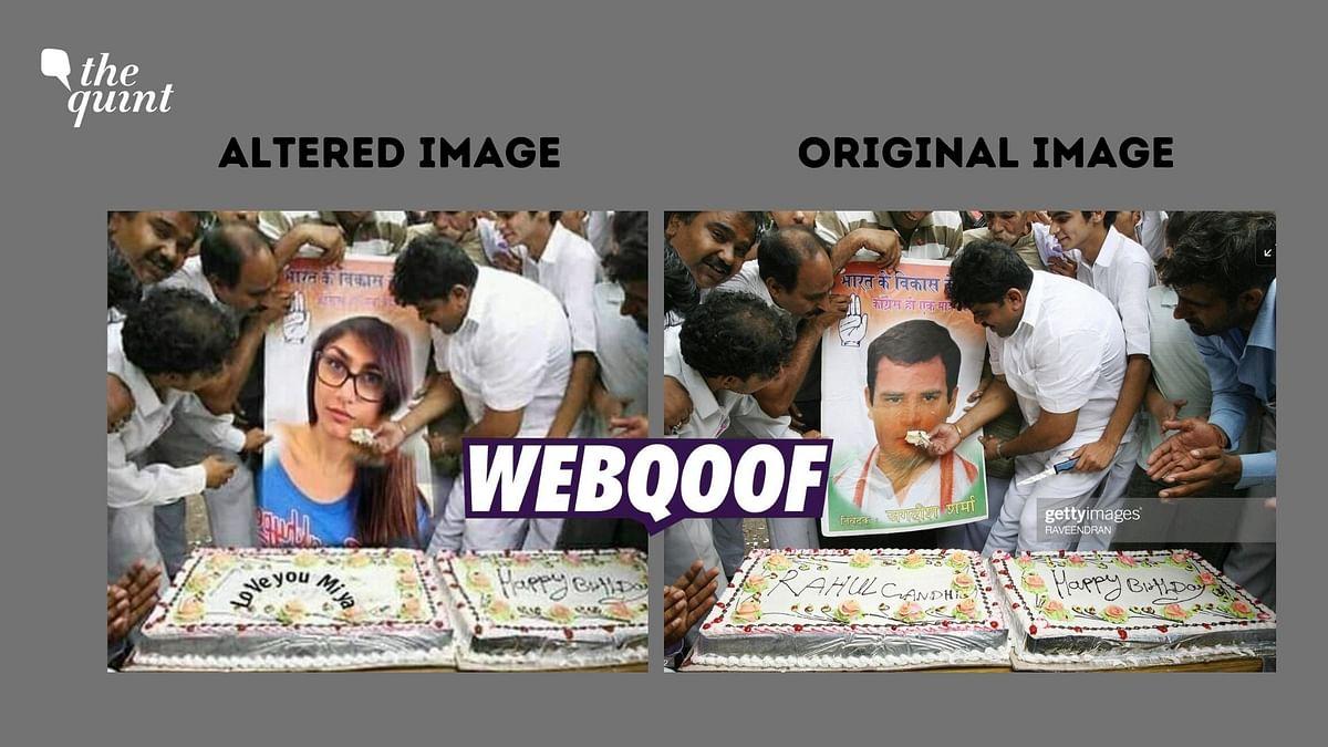 No, the Image Doesn't Show Congress Workers Feeding  Mia Khalifa