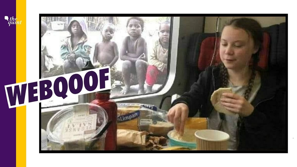 Edited Image of Greta Thunberg Shared  Amid 'Toolkit' Controversy