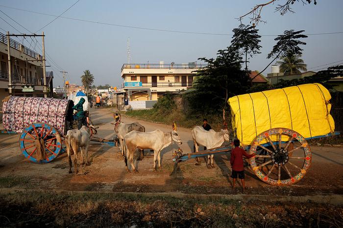 Two bullock-carts draw up near Terakanambi market where police keep a watch on sales to enforce Karnataka's anti-cow slaughter law.