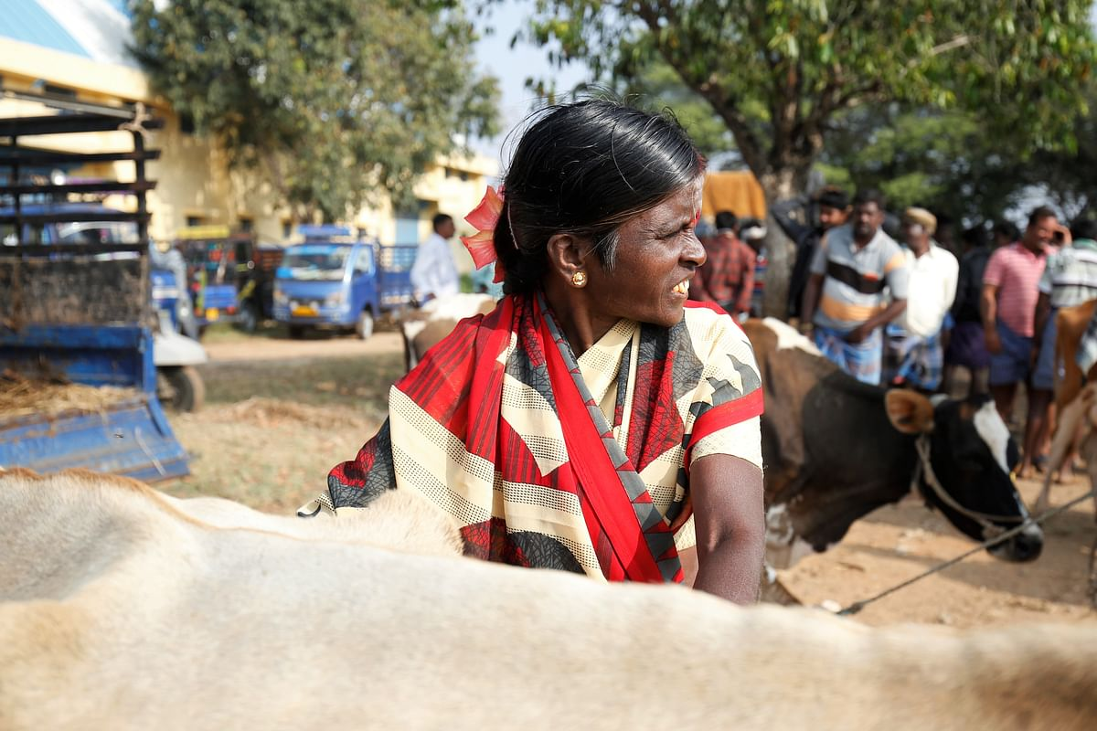 Shivamma, a farmer at Terakanambi market. She is facing losses after the slaughter ban.