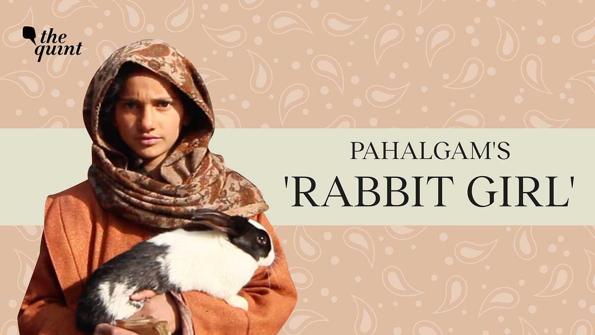 The 'Rabbit Girl' of Pahalgam is Her Nomadic Family's Only Hope