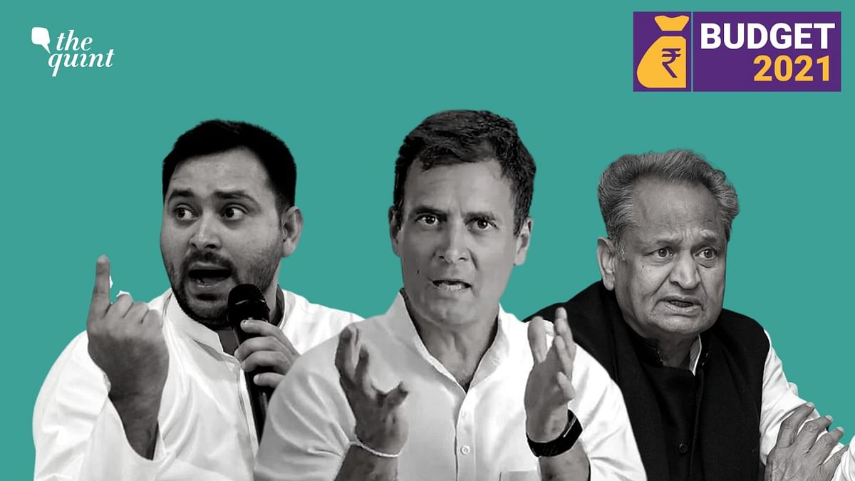 This is 'Sell India' Budget, Says Opposition