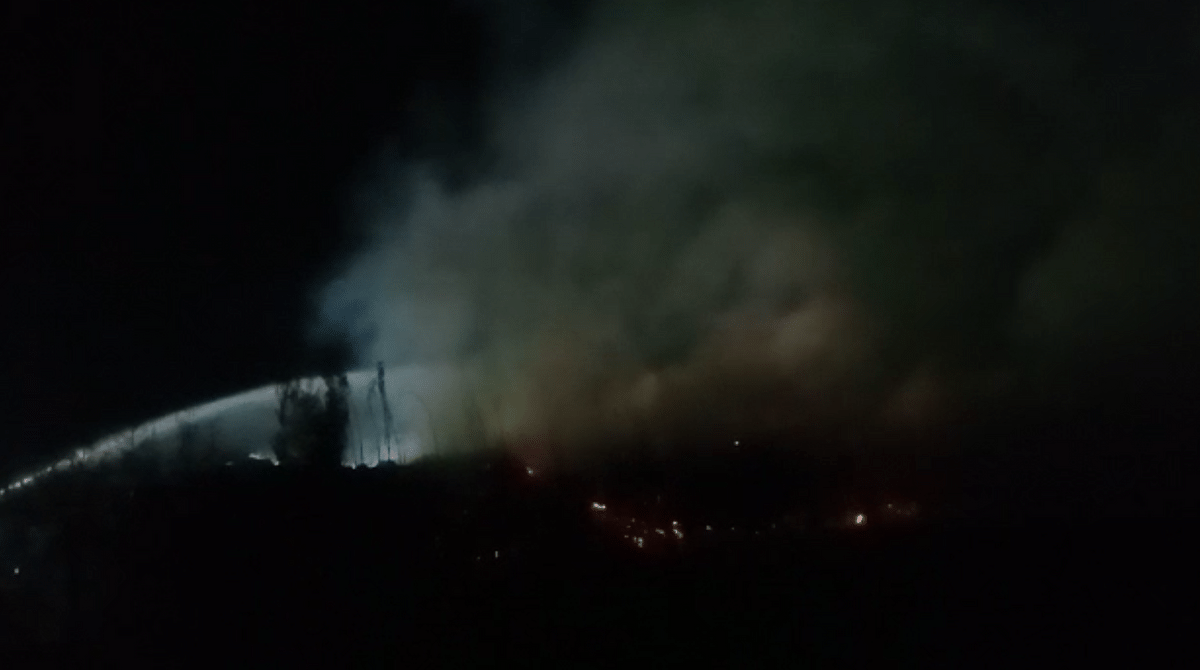 There have even been several incidents reported of the coir pith catching fire.