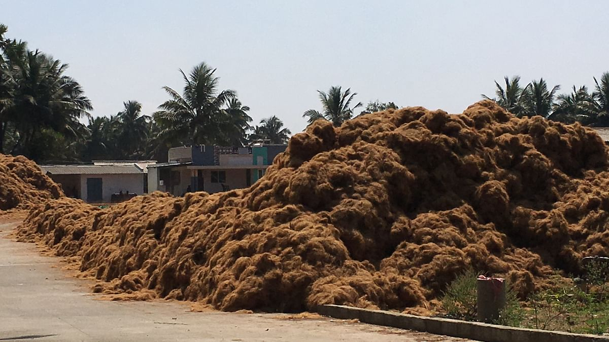Coconut husk is procured from local markets and dumped in factories.