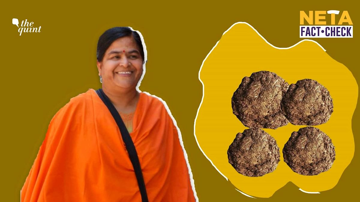 We also found that people suffer from health problems due to burning of cow dung cakes. Image used for representation.
