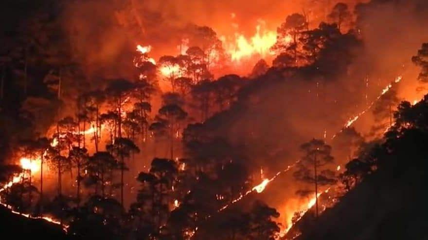 Uttarakhand Forest Fire: Centre Deploys NDRF, CM Calls Urgent Meet