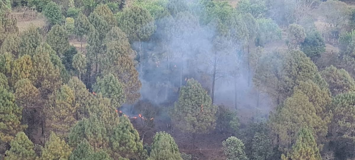 It is a matter of concern that this time, the forests are burning 4.5 times faster than they did last year.