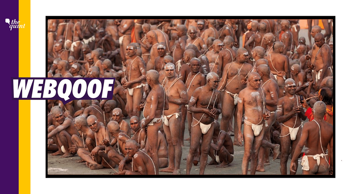 2013 Image Revived to Take a Dig at Kumbh Mela Amid COVID Surge