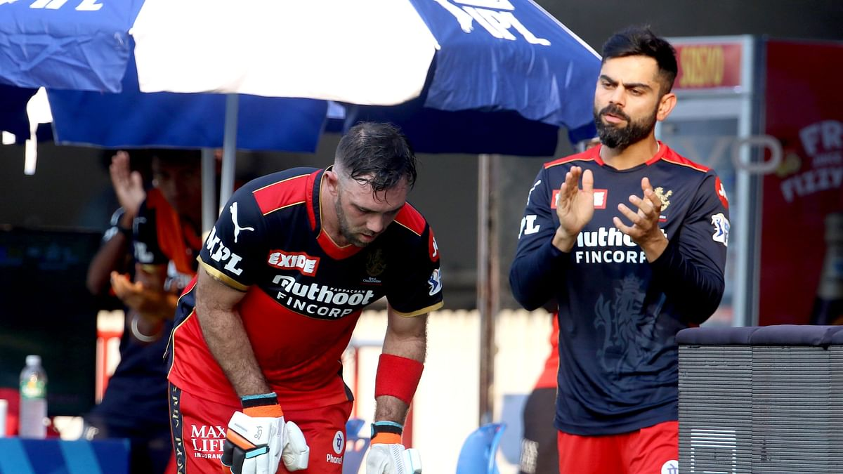 Maxwell Has Taken to RCB Like a Duck to Water: Virat Kohli
