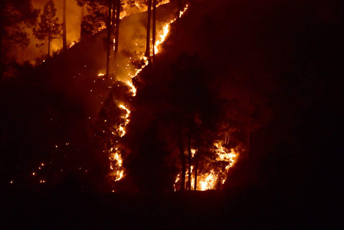 Guptkashi Forest Fire: COVID Not the Only Worry for U'Khand