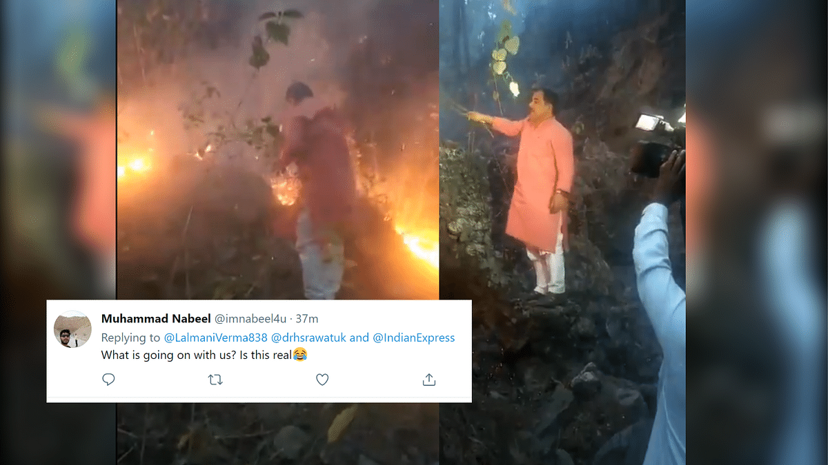 """<div class=""""paragraphs""""><p>Forest Minister Harak Singh Rawat using a bush to douse the forest fires</p></div>"""