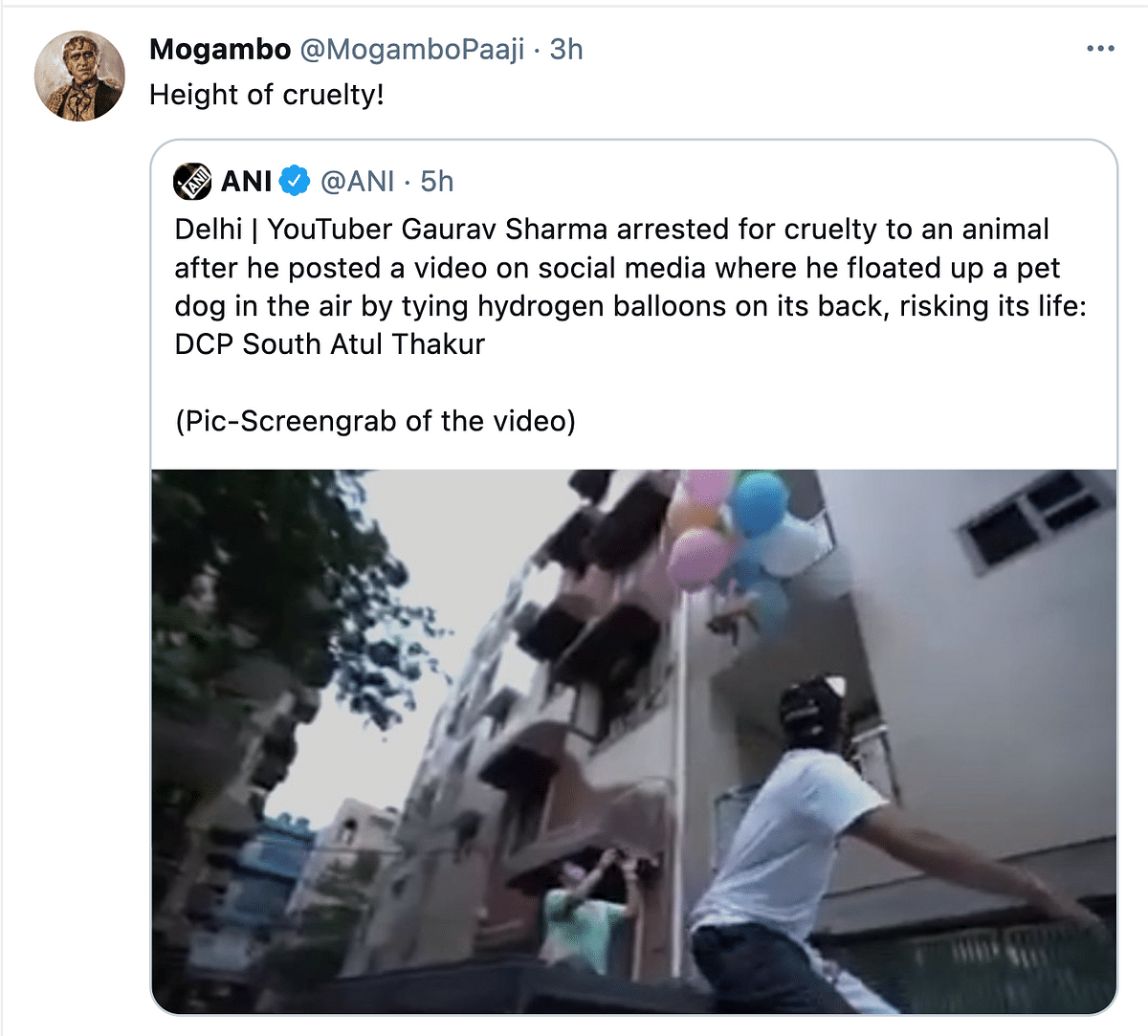 Twitter Furious as YouTuber Ties Dog to a Balloon to Make It Float