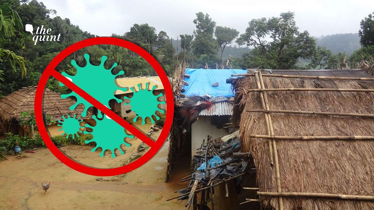Strict Bio-Bubble Rids Kerala's First Tribal Panchayat  of COVID