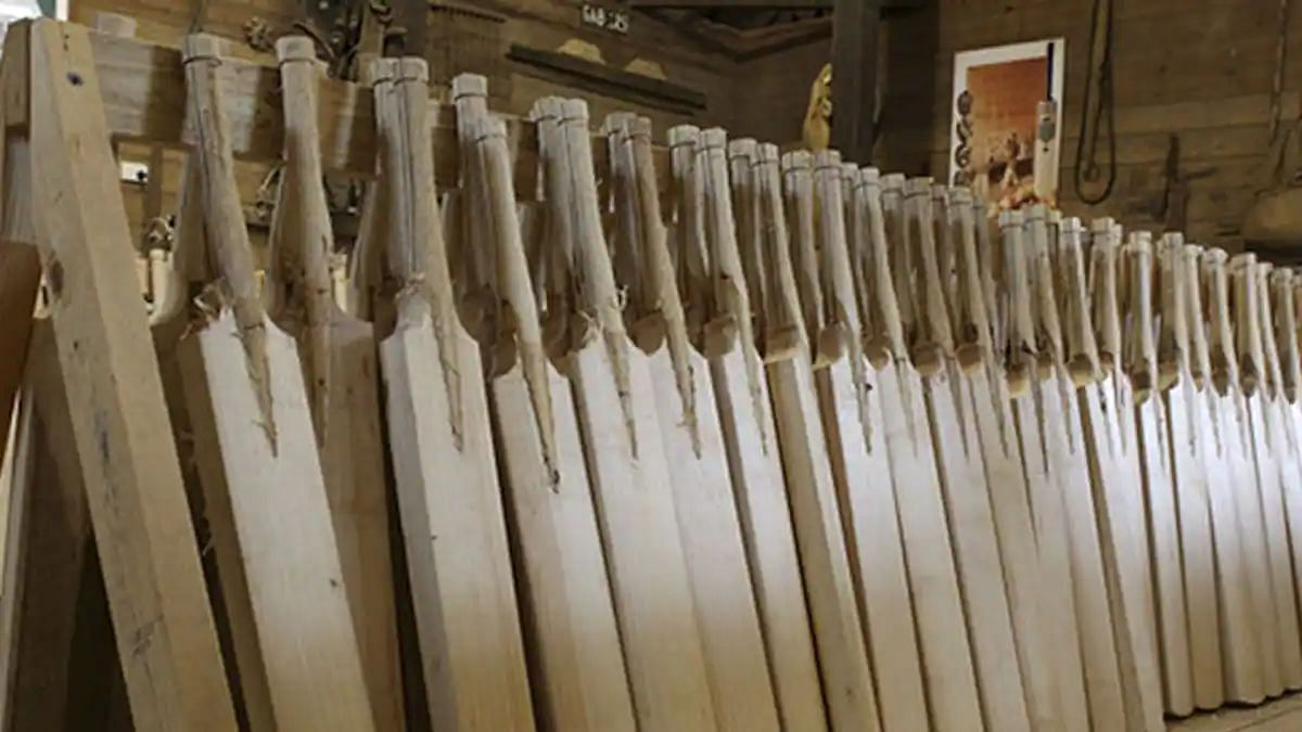 MCC said that the fact that using bamboo bats is an ethical and cheaper alternative provides a pertinent angle.