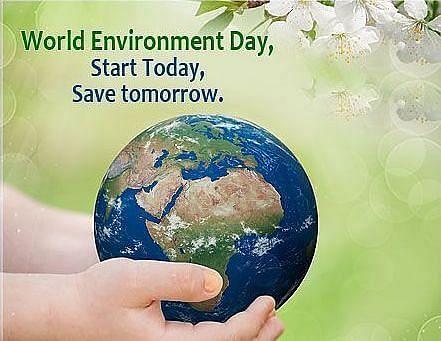 "<div class=""paragraphs""><p>World Environment Day Quotes &amp; Images</p></div>"