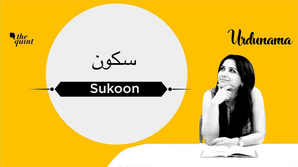 You Described Urdunama As 'Sukoon', That De-Stresses & Heals