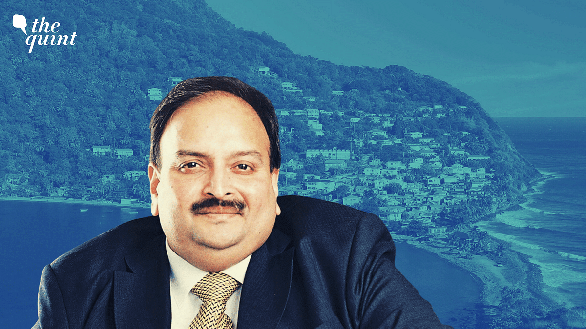 Actively Engaged With Dominica For Choksi's Early Deportation: MEA