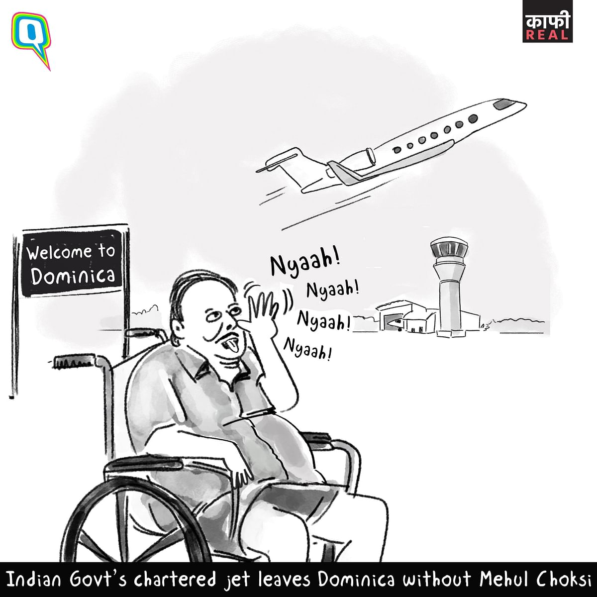 India Returning From Dominica Without Mehul Choksi is 'Kaafi Real'
