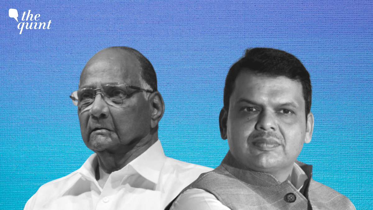 'No Mystery': Sena Rejects Speculations After Pawar-Fadnavis Meet