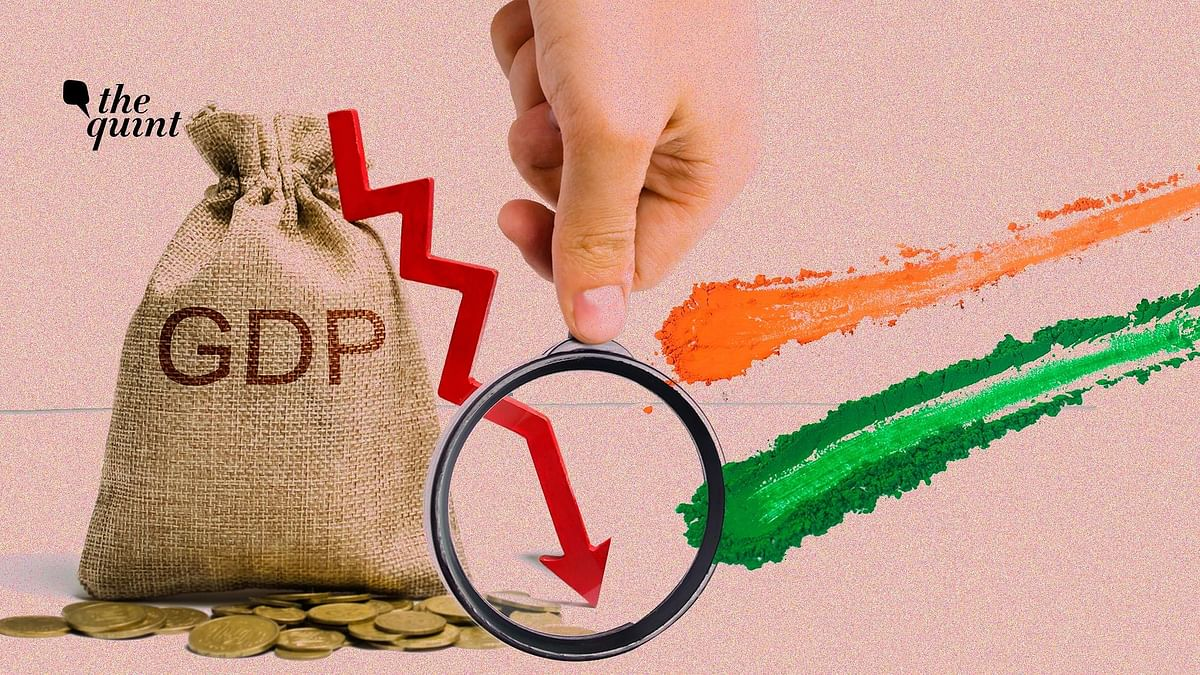India's GDP Fall: Low Household Consumption is a Cautionary Tale