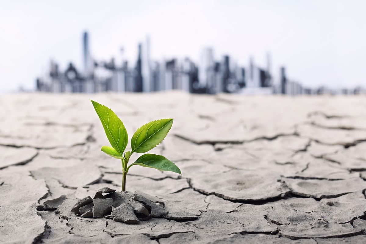 World Environment Day 2021: Theme, History & Significance