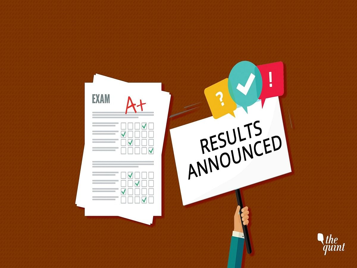Tamil Nadu Board Class 12 Result Declared: Here's How to Check It
