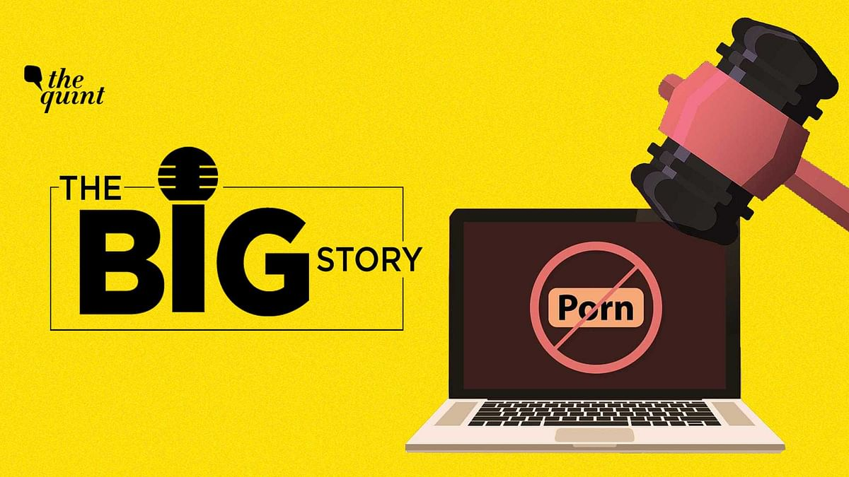 """<div class=""""paragraphs""""><p>The Big Story Podcast on Raj Kundra Porn Films Case and the Laws Pertaining to Adult Film Industry in India.&nbsp;</p></div>"""