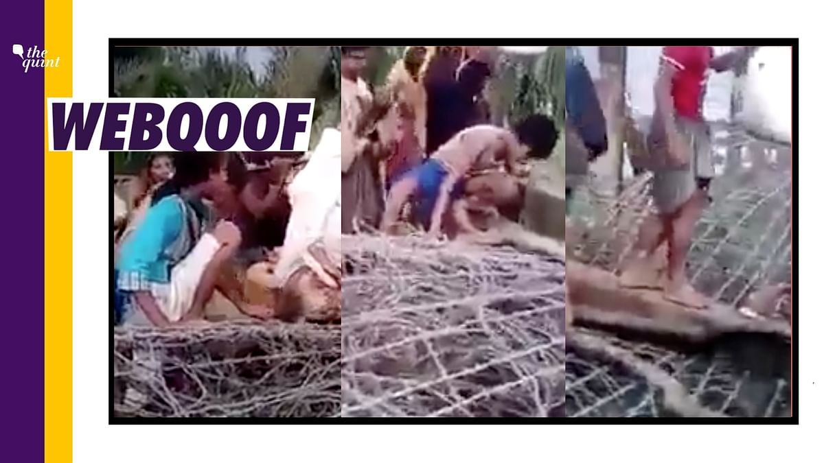 Video From Myanmar Shared as 'Bangladeshis Entering West Bengal'