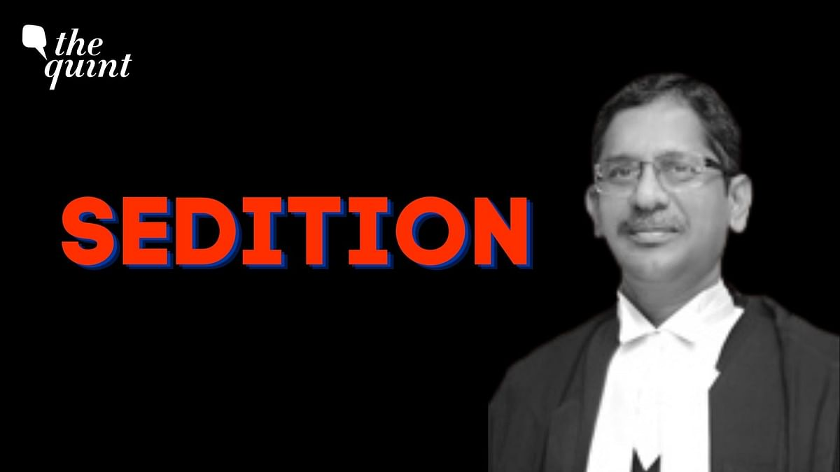 'Welcome Observation': Politicians, Lawyers on CJI's 'Sedition' Query