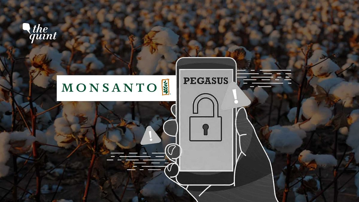 Six Senior Officials of Seed Giant Monsato Potential Pegasus Targets: Report