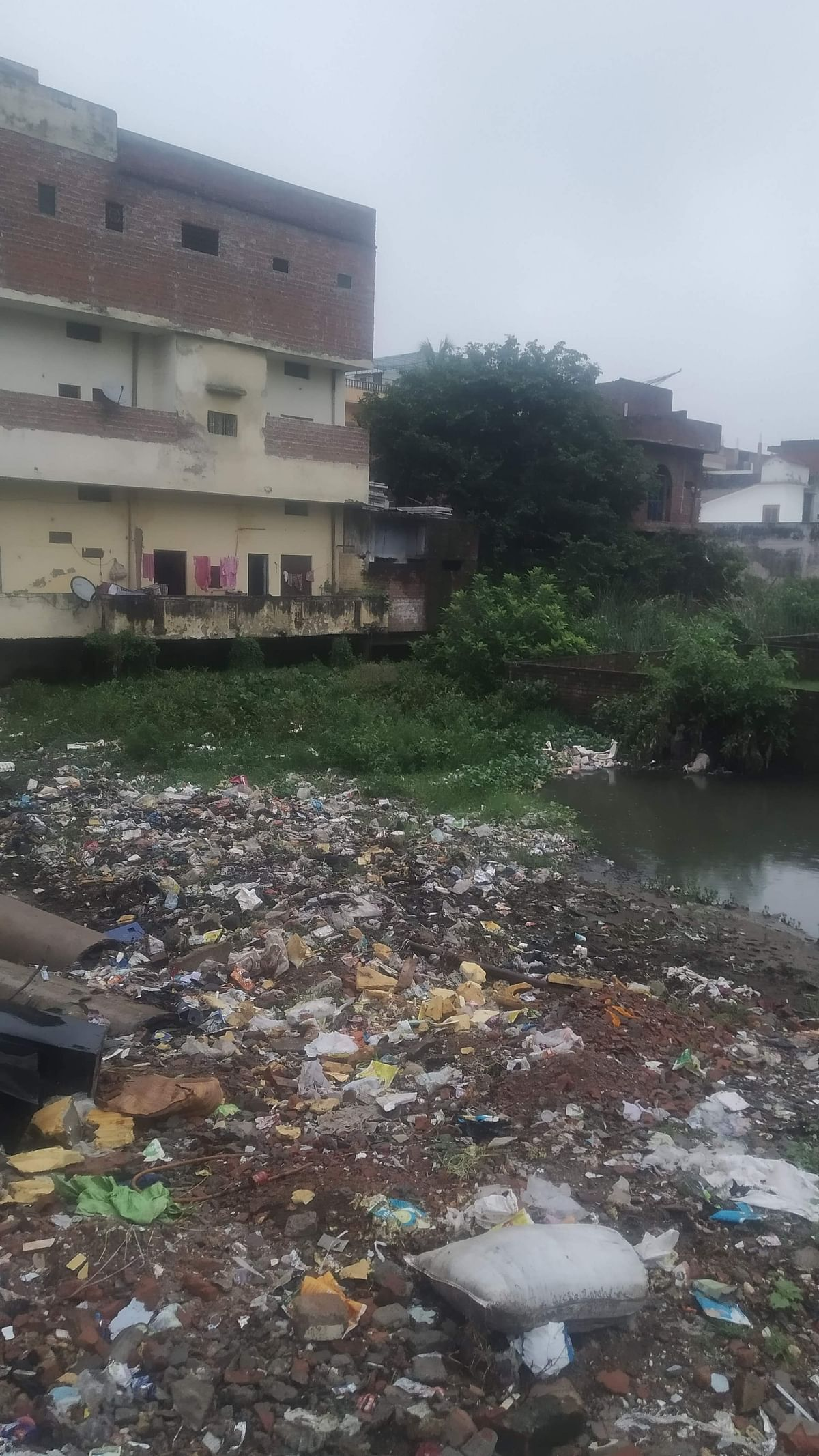 """<div class=""""paragraphs""""><p>Garbage dumped in Assi river flowing through the backyards</p></div>"""