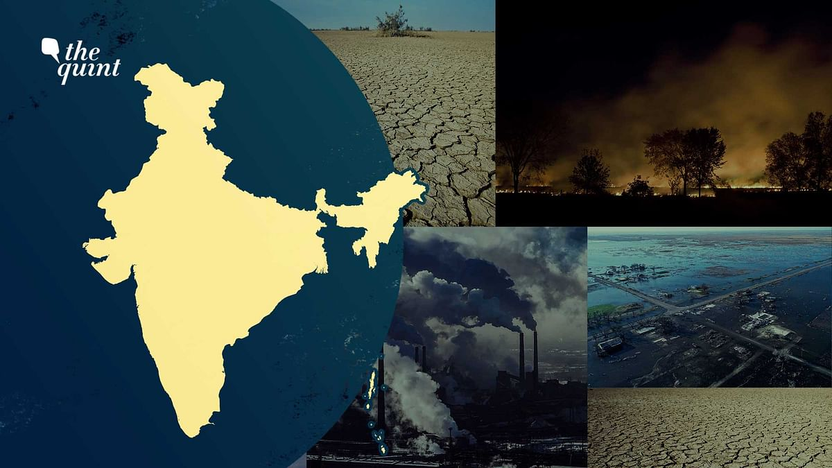 """<div class=""""paragraphs""""><p>IPCC Climate Change Report: What Should Be India's Immediate Plan Of Action?</p></div>"""
