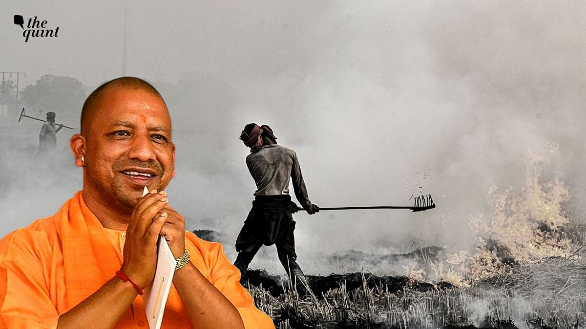 Govt Will Withdraw Cases of Stubble Burning Against Farmers: UP CM