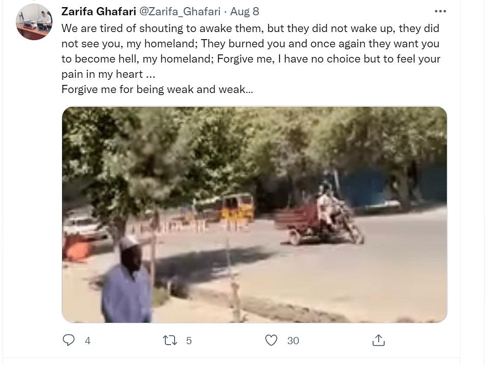 "<div class=""paragraphs""><p>Zarifa Ghafari via Twitter.</p></div>"
