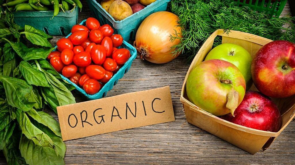 Mumbai Housing Society Makes Fertiliser Using Garbage, Grows Organic Veggies