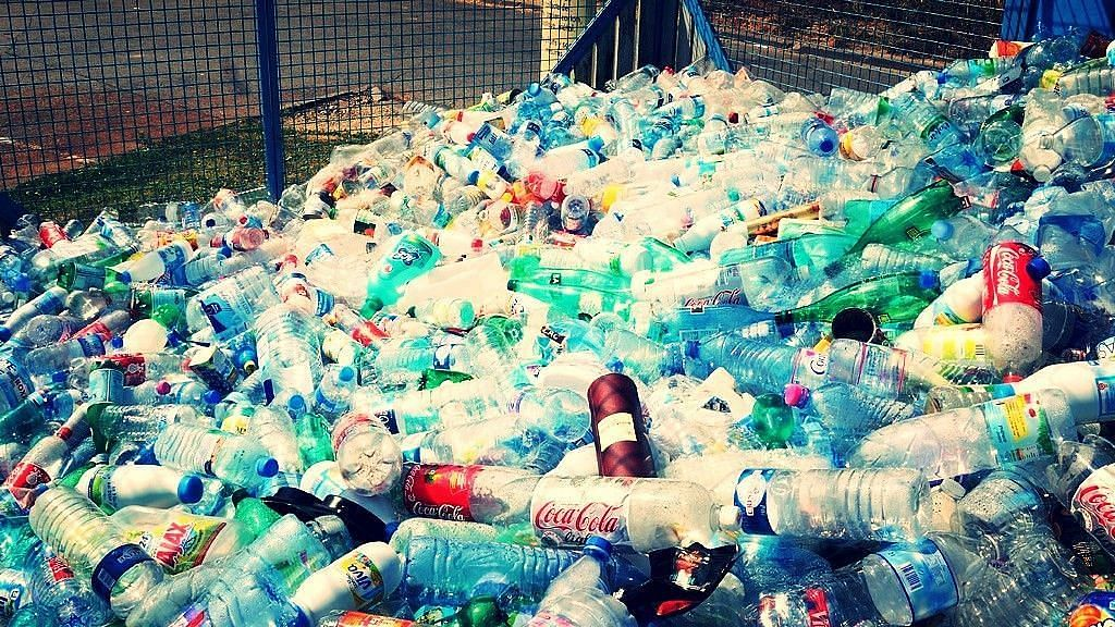 """<div class=""""paragraphs""""><p>IPCA has collected, segregated, and recycled 6,772 metric tonnes of plastic waste in the city of Dehradun since 2018. Representative photo.</p></div>"""